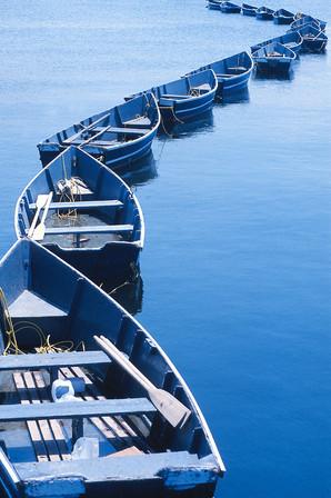 Boats At Playland