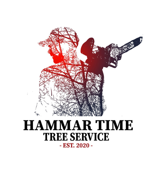 HAMMAR TIME