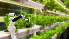 Innovative Farming.jpg