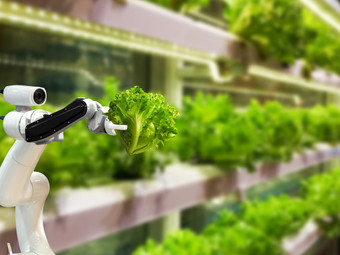 Innovative farming. Experience of Russia and Europe