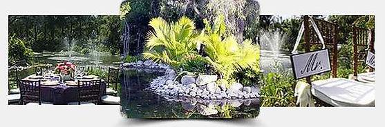 eden-gardens-vw.jpg