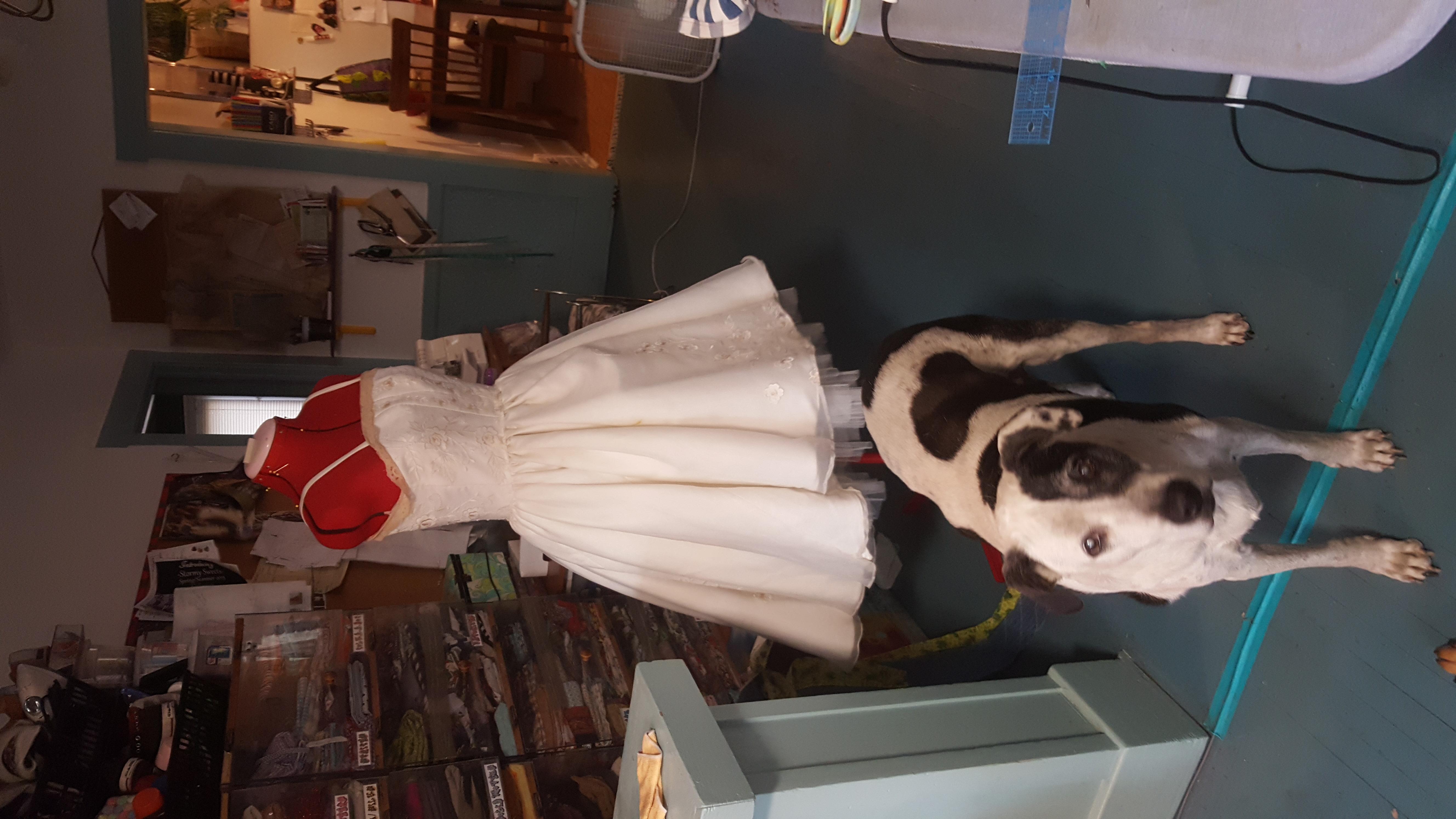 My Vintage Dress