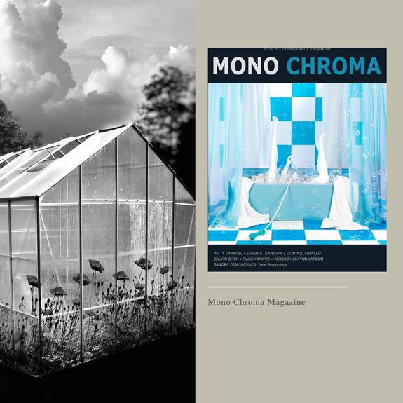 Mono Chroma Magazine