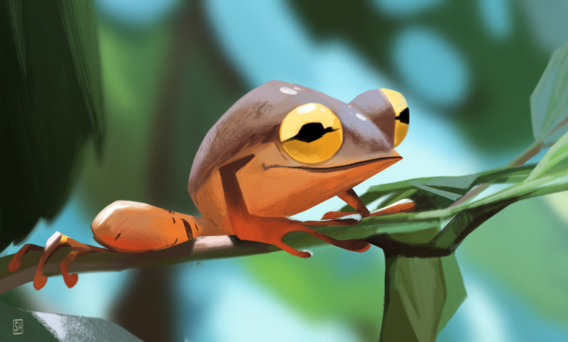 Froggie_study.jpg