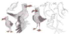 Seagull_exploration_2.png