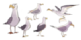 Seagull_exploration_1.png