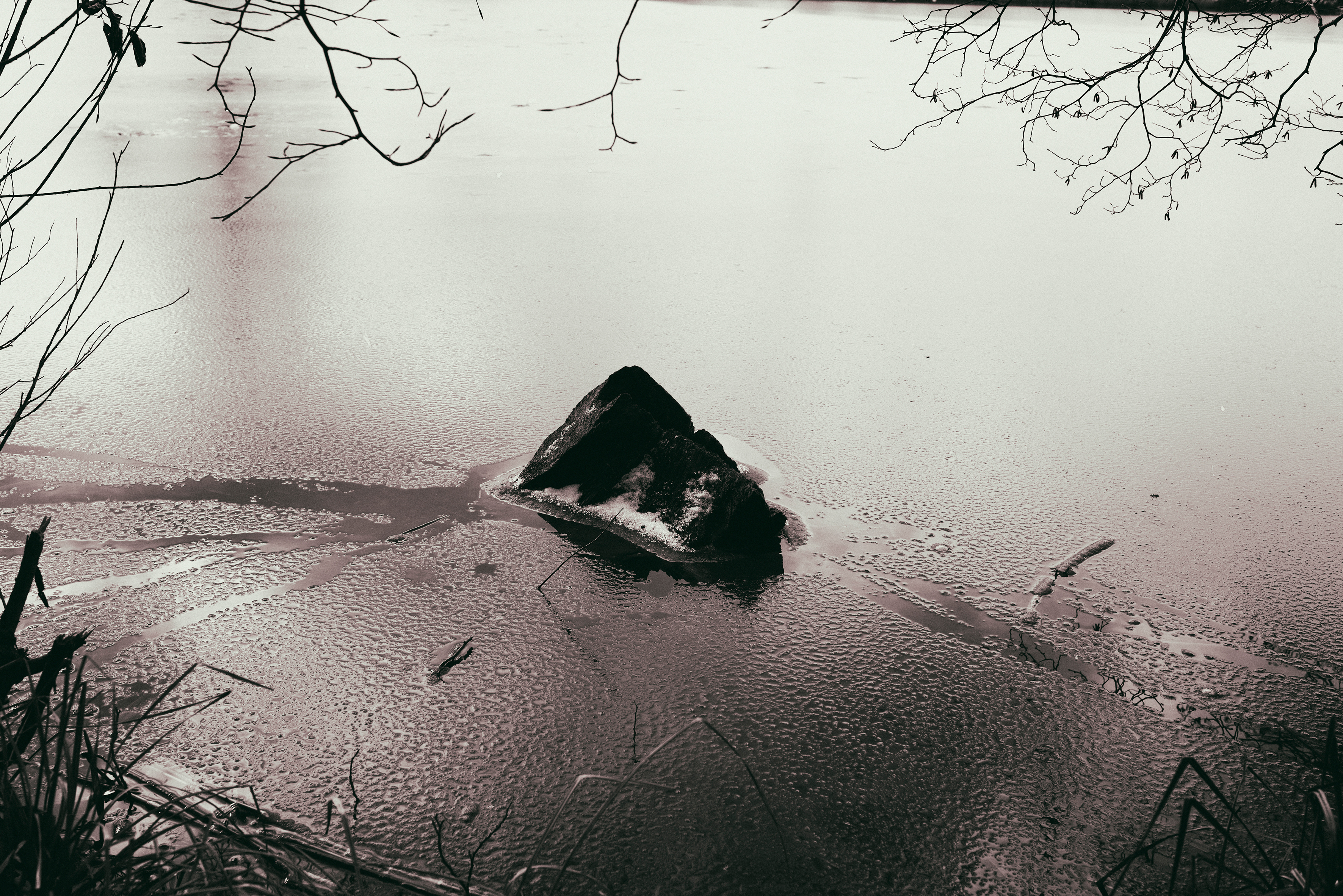 by Miguel Carbajal