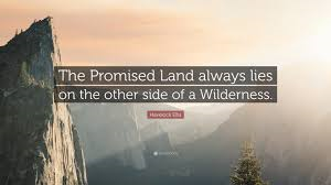From Wilderness to the Promised Land