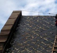 Pltető felújítás országosan