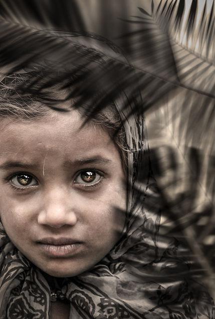 Cachemire-portrait-1-SEPIA-jungle.jpeg