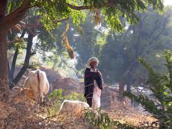 Udaipur+par+Gaelle+LUNVEN+41.jpg