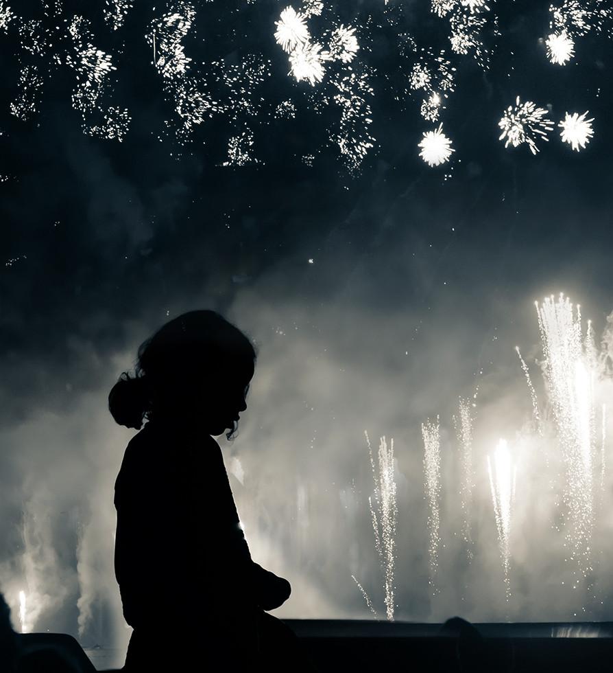Firework sky blooming