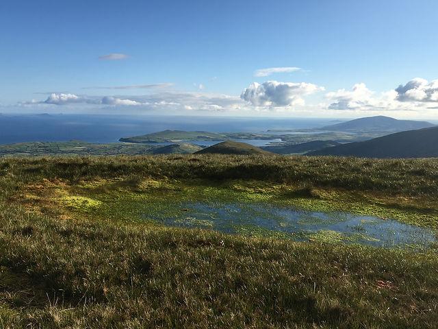 small wetland on mountain ridge (Irel).J