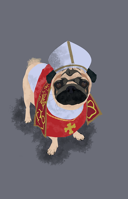 POPEPUG.png