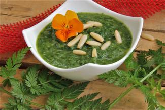Brennnessel-Spinat mit Pinienkerne