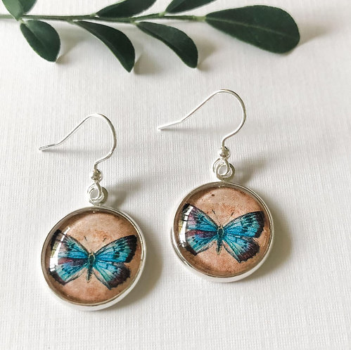 vintage butterfly with blue wings
