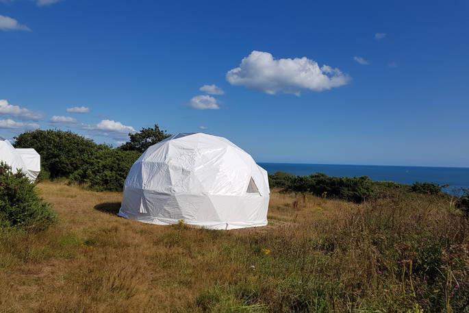 The Cirl Bunting Geo Dome.jpg