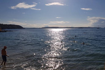Sea Swimming at Cawsand.jpg