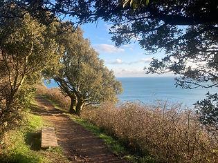 Coast Path.jpg