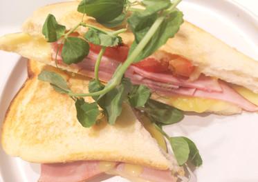Ham Cheese & Tomato Toastie