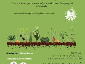 """Tailerra """"Gure baratzak zaintzen dituzten landareak"""" / Taller """"Plantas que curan nues"""