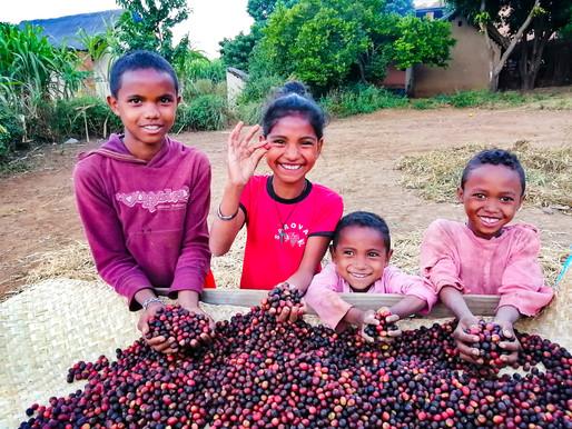 コーヒーのサプライチェーンを再定義する!産地でコーヒーを焙煎するのが何故タブーなのか