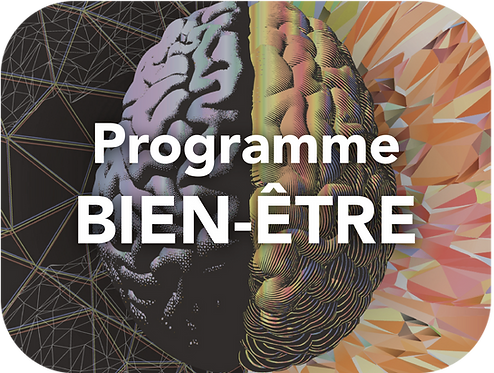 Programme BIEN-ÊTRE