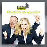 BSB brochure