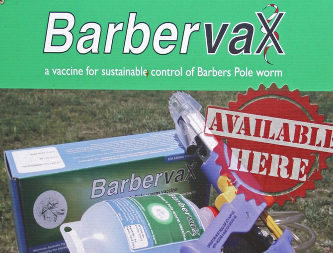A Vaccine for Barber Pole Worm