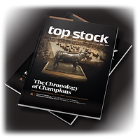 Top Stock Subscription