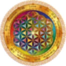 flower_of_life__dark_t_600_by_lilyas-d6dj10y.png