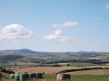 View, Northumberland