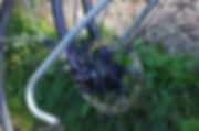 Swallow bespoe bicycle disc ad hub