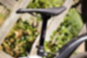 Gentic syngenic seat post test review bicycle cycle
