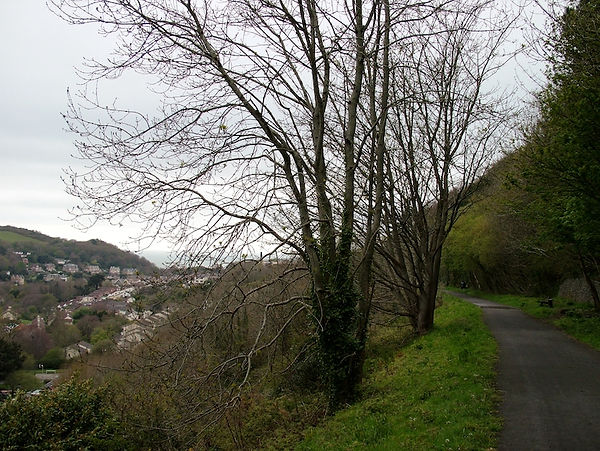 cycle track rail path Ilfracombe