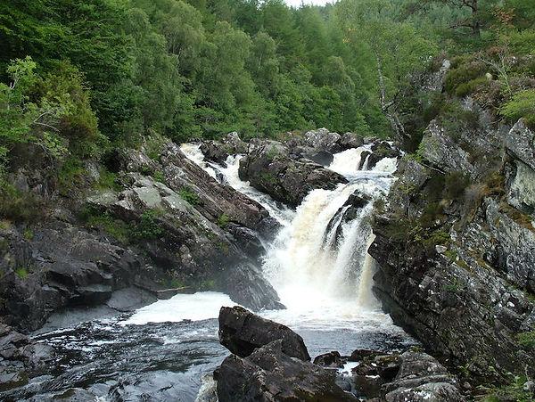 waterfall cascade rapids forest