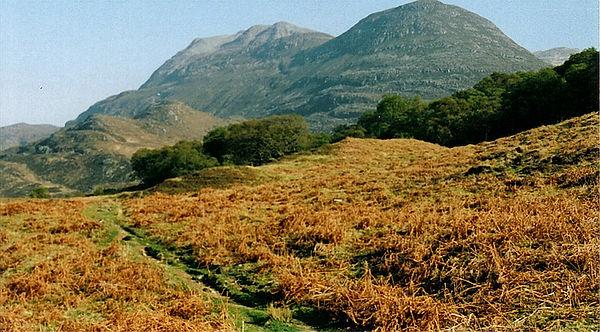 mountain bracken hillside scotland highland