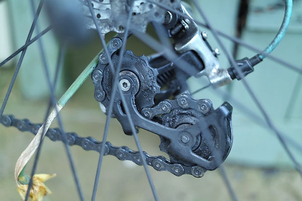 derailleur mech jockey wheel rear bicycle cycle velo