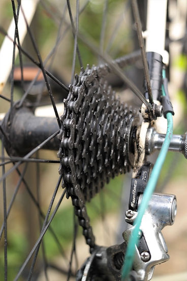 bike bicycle cycle chain cassette brush