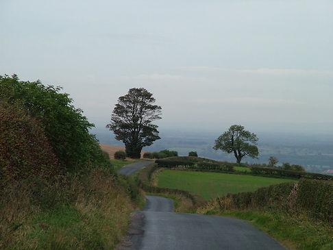 Wolds yorkshire lane scarpDSCF8480.JPG