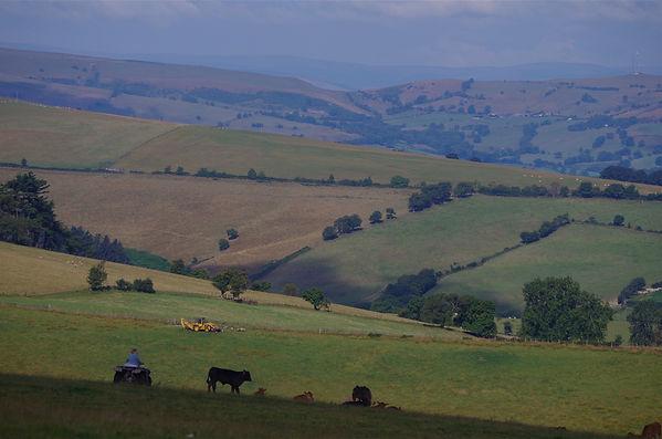Kerry Ridgeway view