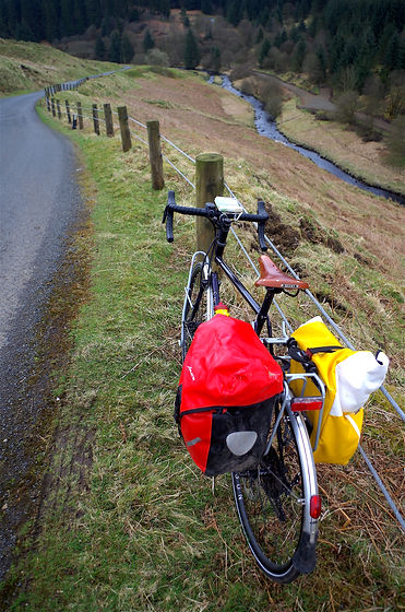 Cycle touring in Kershope forest nearc NCR10