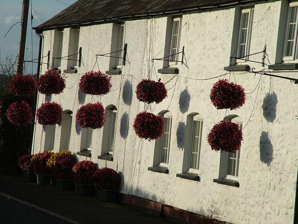 houses hanging baskets sunshine