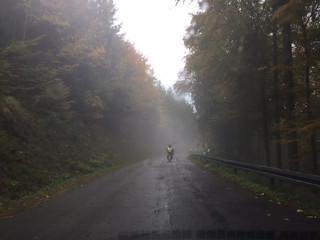 Abrollern im Schwarzwald
