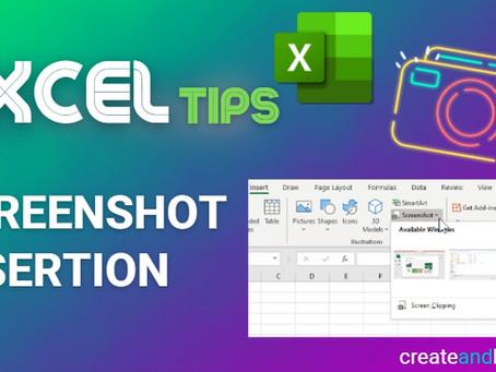 Excel Tips - Screenshot Insertion
