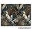 Thumbnail: Set de table 33cm x 45cm - Perroquet