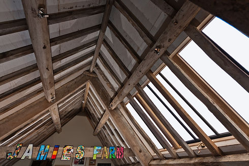 rooflight to fit between rafters