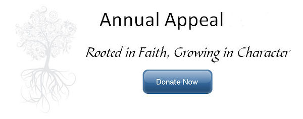 AnnualAppeal-DonateNow.jpg