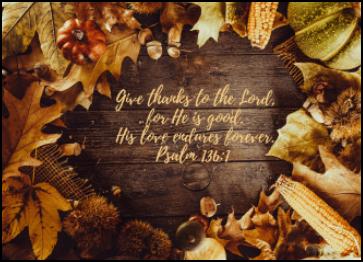 November 22, 2020 - Solemnity of Christ the King