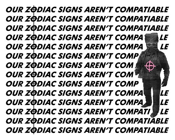 zodiacsigns copy.jpg
